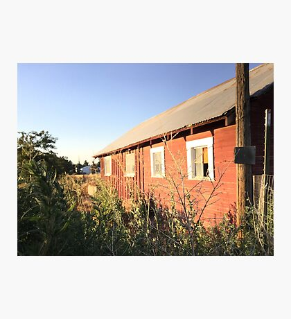 Abandoned old red barn with rusty tin roof Photographic Print
