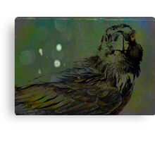 A Crow for Andy Warhol Canvas Print