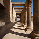 The Temple of Philae by david marshall