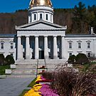 Capitol of Vermont by Wanda Dumas