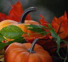 Pumpkin Get Together by Sunshinesmile83