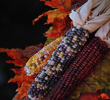 Fall Harvest by Sunshinesmile83