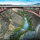 Crooked River Gorge Bridge by WiredMarys
