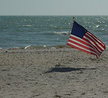 Old Glory by Karen Checca