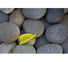 Zen Simple Photographic Print