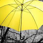 Yellow by KirstyStewart