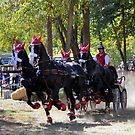 Switzerland World Equestrian Driving Team by Landscapes Mainly .