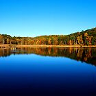 Fall at Mendon Ponds by tigerwings