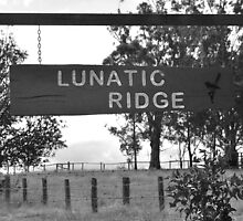 Lunatic Ridge by Penny Smith
