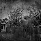 Charming Cottage Mono by garts