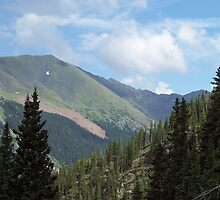 Wheeler Peak, New Mexico U.S.A. by David  Hughes