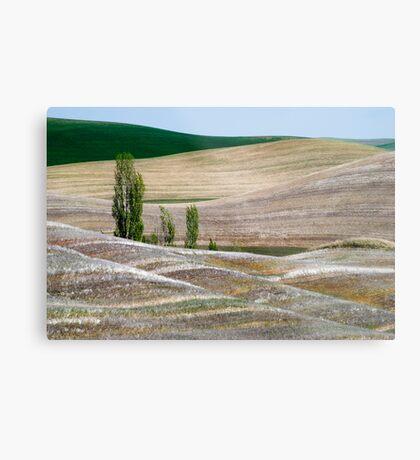 Palouse Landscape Metal Print