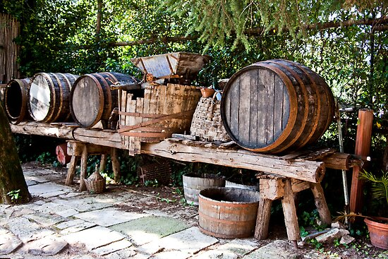 Wine Making by phil decocco