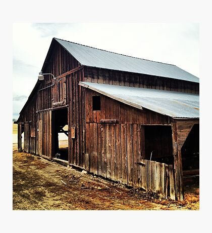 Distressed Red Wooden Barn with Tin Roof Photographic Print