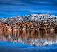Blue Surround by Bob Larson