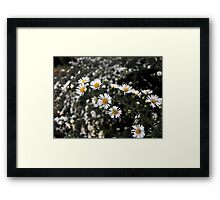 Sugar Sprinkles Framed Print