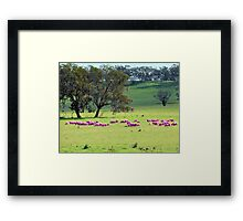 Breast Cancer Aware Sheep (please view larger) Framed Print