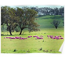 Breast Cancer Aware Sheep (please view larger) Poster