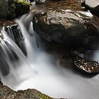 A small waterfall on Mt Wellington by Will White Photography