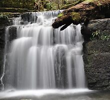 Waterfall on Mt Wellington by Will White Photography