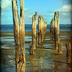 A pier into the past by Jenny Wood