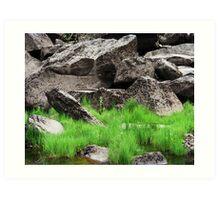 Cataract Gorge Rocks 1C  Art Print