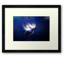 Paradise Bird Framed Print