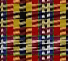 02902 Eusa District Tartan by Detnecs2013