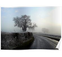 Misty Morning Poster