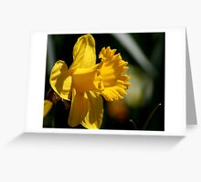 Yellow Trumpet Greeting Card