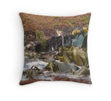 Shiny, Wet and Kelp Throw Pillow