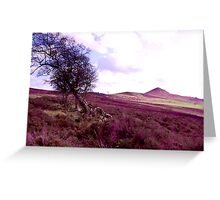 Snilesworth Moor - NYM  National Park Greeting Card