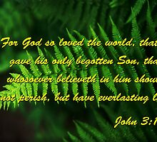 Fern John 3:16 by hexhead