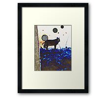 Top Dog And Orbs At Midnight Framed Print