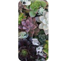 Suuculents iPhone Case/Skin