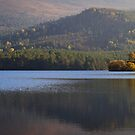 Loch an Eilein View by Christopher Thomson