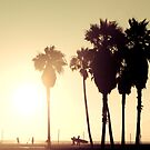 Venice Beach...Surf, Volley, Windsurf by Chris Muscat