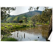 Sheep Country - Victorian Alps Poster