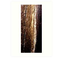 Cataract Gorge Rocks 1L Art Print