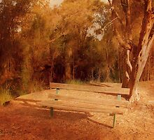 Riverside Bench by Elaine Teague