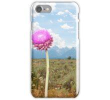 Grand Teton National Park iPhone Case/Skin