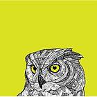Ornate Owl by IanThomasJones