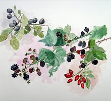 """Autumn Hedgerow"" - Blackberries, Sloes & Rosehips by Timothy Smith"