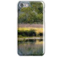 Bedlam Creek Wattle - NSW Australia iPhone Case/Skin