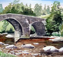 """Dippers"" - The River Dart, Dartmoor by Timothy Smith"