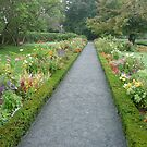 Formal garden walkway by nealbarnett
