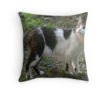 who me ? Throw Pillow