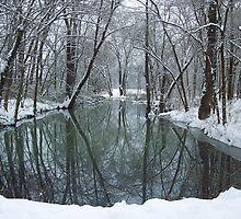 Winter Snow an reflections, White river Arkansas by David  Hughes