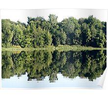 boyle lake reflections Poster