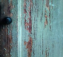 Time Worn Teal Door by woodlandwild